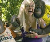 Männlicher Affe