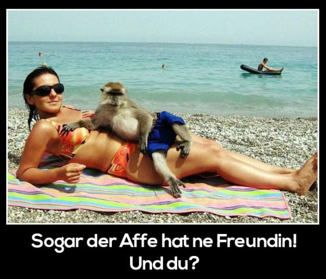 Ein Affe liegt lässig auf einer jungen Frau im Bikini am Strand.