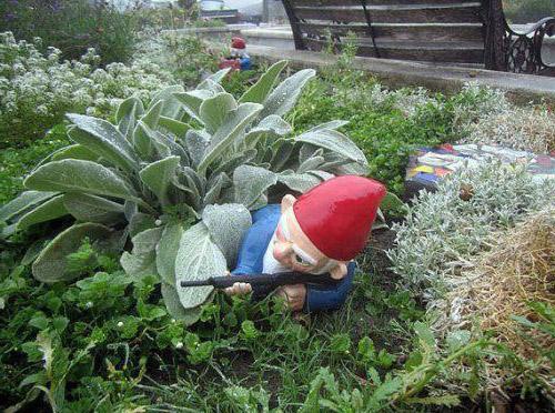 In einem Garten steht ein Gartenzwerg-Scharfschütze, der sich an einer Pflanze vorbei lehnt.