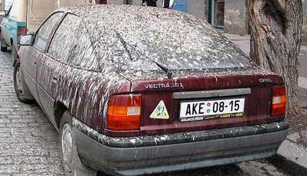 Ein Auto ist mit Taubenkot bzw. Vogelkot bedeckt.