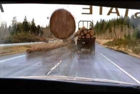 Ein Baumstamm fliegt auf die Windschutzscheibe eines Autos zu.