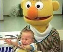 Fieser Bert