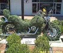 Grünes Motorrad