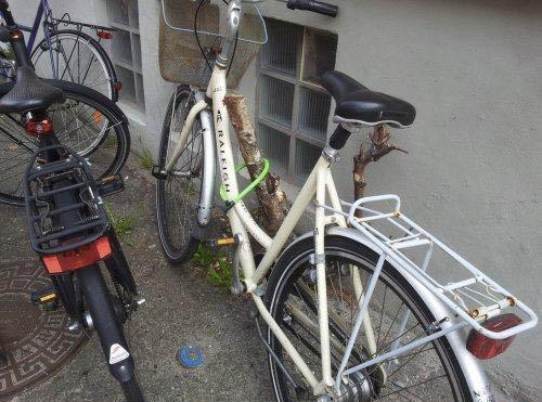 Ein Fahrrad ist so an einem Baumpfahl mit einem Fahradschloss befestigt, dass man es einfach mitnehmen kann.