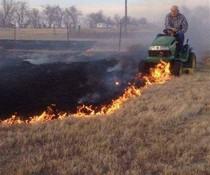 Rasenbrand löschen