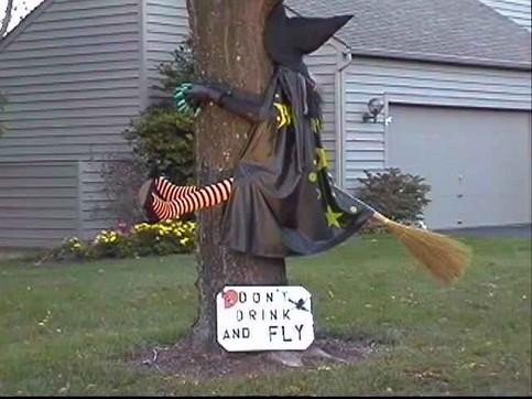 Eine Hexe ist mit ihrem Besen vor einen Baum geflogen.