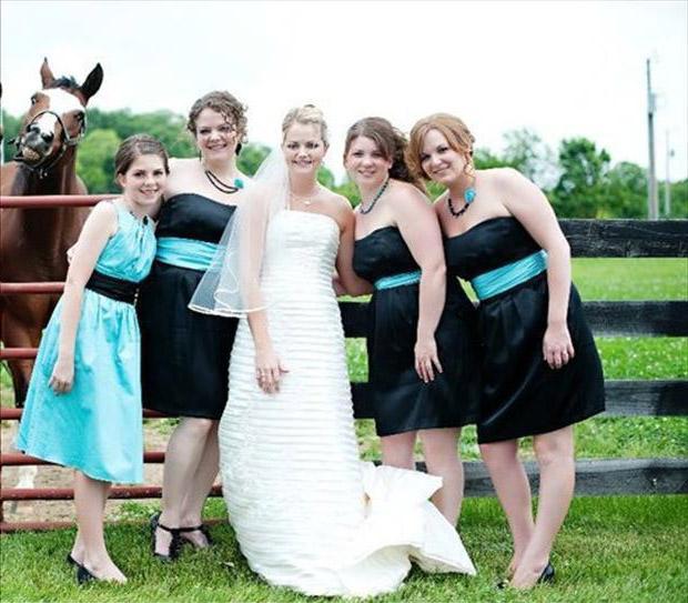 Eine Braut posiert mit anderen Frauen während ihrer Hochzeit im Hochzeitskleid. Im Hintergrund schaut ein Pferd in die Kamera.