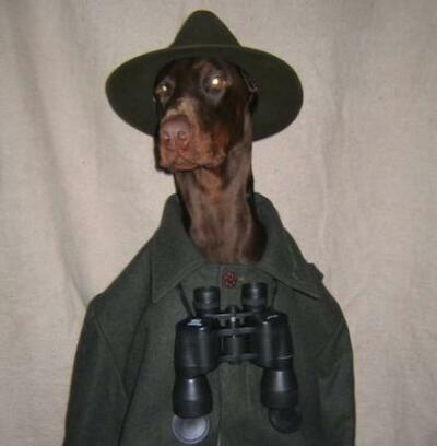 Ein Hund mit Hut, Jägermantel und Fernglas als Förster oder Jäger.