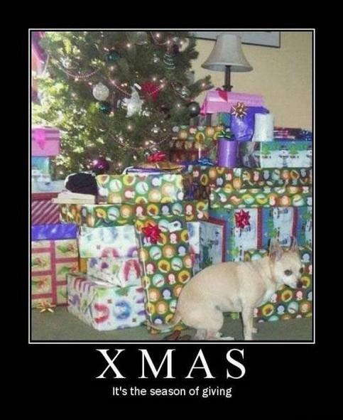 Ein Hund kackt einen Haufen unter einen Weihnachtsbaum.