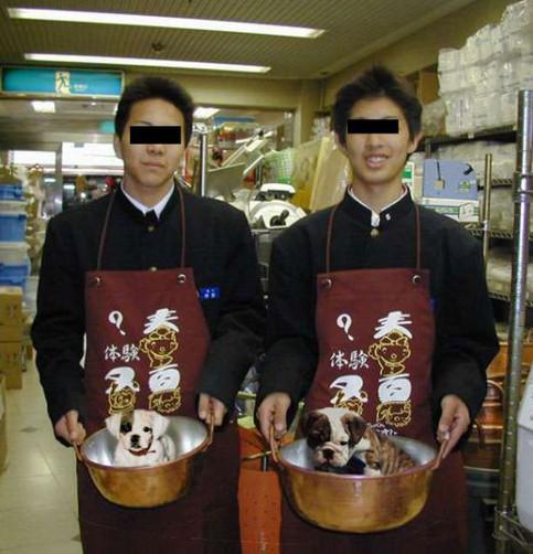 Zwei chinesische Köche mit zwei Hunden in Kochtöpfen.
