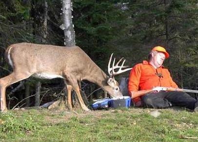 Ein Jäger ist eingeschlafen, währenddessen frisst ein Hirsch sein Essen.