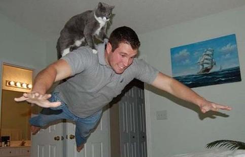 Ein Mann springt waagrecht durch ein Zimmer, eine Katze sitzt auf seinem Rücken. Es sieht aus als würden die beiden fliegen.