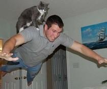 Fliegen mit Katze
