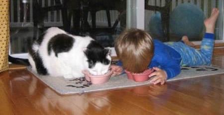 Ein Kind und eine Katze liegen nebeneinander auf dem Boden, jeder hat eine Schüssel vor sich und beide fressen aus der Schüssel