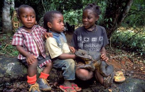 Drei Kinder spielen mit einem Riesenfrosch.