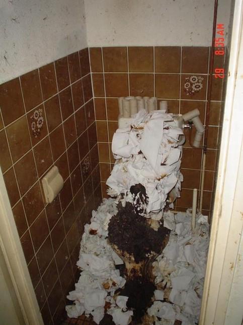Ein Toilette ist bis zum Rand vollgekackt.