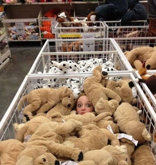 Eine Frau hat sich in einem Laden in einer Box unter Kuscheltieren versteckt. Nur ihr Gesicht schaut zwischen den Kuscheltieren hervor.