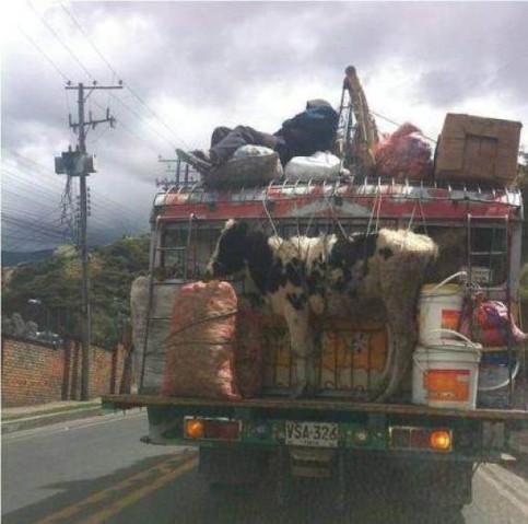 Am Heck eines Busses oder LKWs ist eine Kug festgebunden, das Fahrzeug fährt so herum.