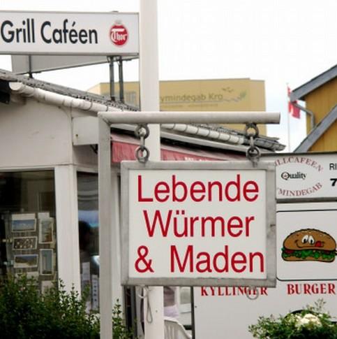 """Ein Schild bietet """"Lebende Würmer und Maden"""" an."""
