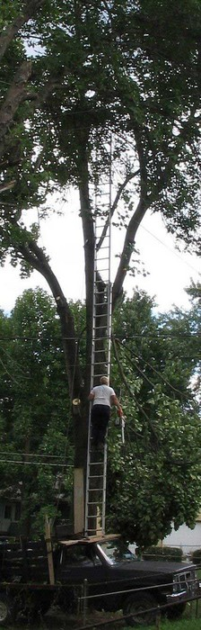 Ein Mann stellt eine sehr lange Leiter auf einem Auto ab und kletter darauf.