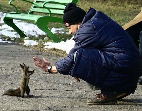 Ein Mann und ein Eichhörnchen klatschen sich ab.