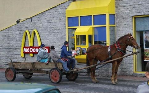 Ein Pferdegespann bei McDonals im McDrive.