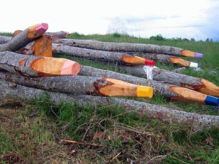 Ein Haufen Baumstämme, die wie Bleistifte geschnitten und bemalt sind.