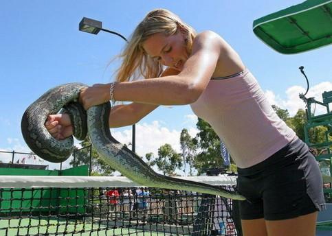 Eine Schlange und eine junge Frau auf einem Tennisplatz.