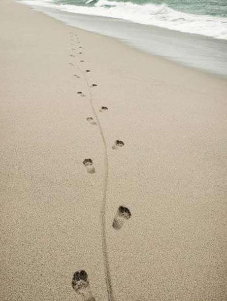 Eine Schleifspur zwischen Fußabdrücken am Strand.