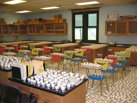 In einem Klassenzimmer wurden überall gefüllte Plastikbecher aufgestellt, wahrscheinlich ein Schülerstreich.