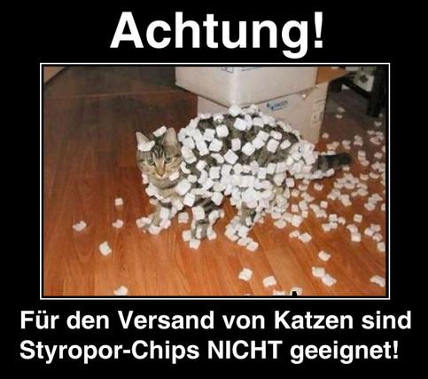 Ein Foto einer Katze, die mit Styropor-Teilen bedeckt ist. Dazu der Text: Achtung! Für den Versand von Katzen sind Styropor-Chips ungeeignet.