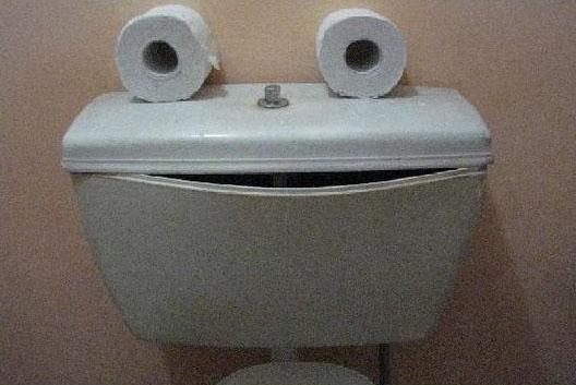 Es sieht so aus, als würde eine Toilette lacht. Der Spülkasten ist verzogen wie ein lachender Mund. Darauf liegen zwei Klopapierrollen, die ausehen wie Augen.