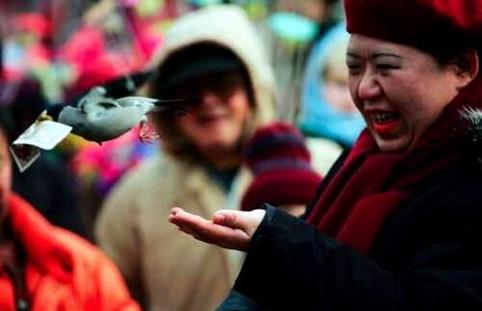 Ein Vogel klaut einer Frau einen Schein aus der Hand.
