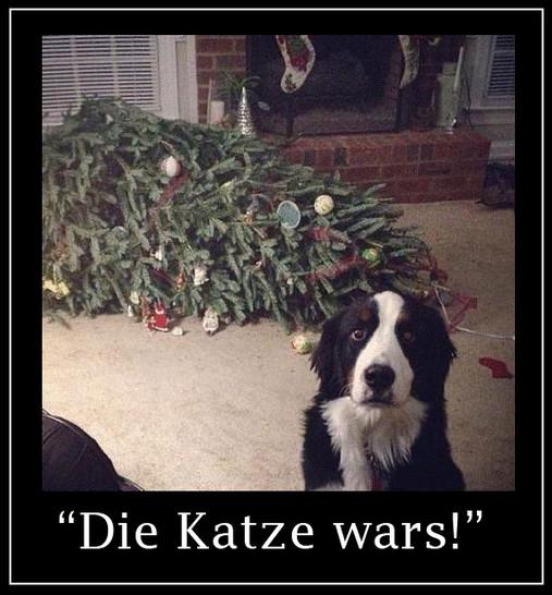 """Ein Hund hat einen Weihnachtsbaum umgeworfen und schaut nun schuldbewusst in die Kamera. Dazu steht der Text """"Die Katze wars!"""""""