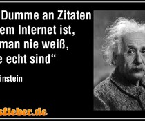 Internet-Zitate