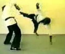 Karate-Affe